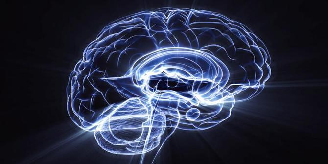 9 Makanan untuk Pencerdas Otak