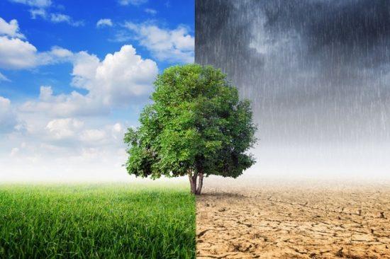 Apa Perbedaan Antara Iklim dengan Cuaca? Simak Penjelasannya Disini!