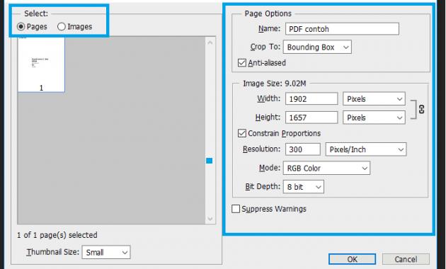 4 Cara Memperbesar Ukuran PDF 4