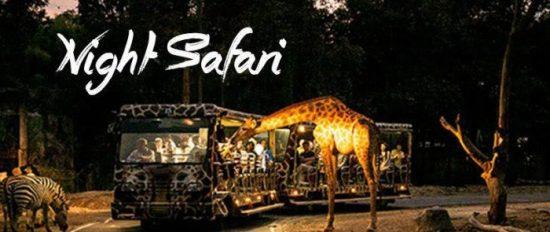 Harga Tiket dan Wahana di Taman Safari
